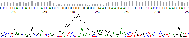 Figure 1. G dye blob near 190 bases