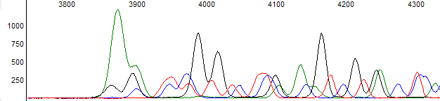 Figure 3. Example of late dye signal